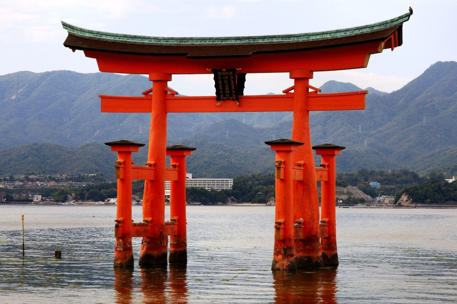 a description of shintoism which means the way of the gods Start studying religion 8 shintoism learn vocabulary, terms  the japanese often use the term kami-no-michi, which also means the way of the gods, to describe.