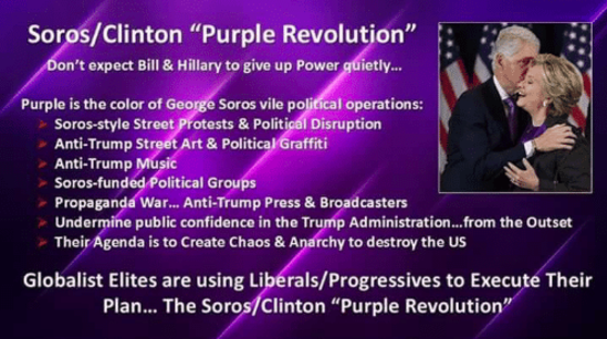 Image result for purple revolution