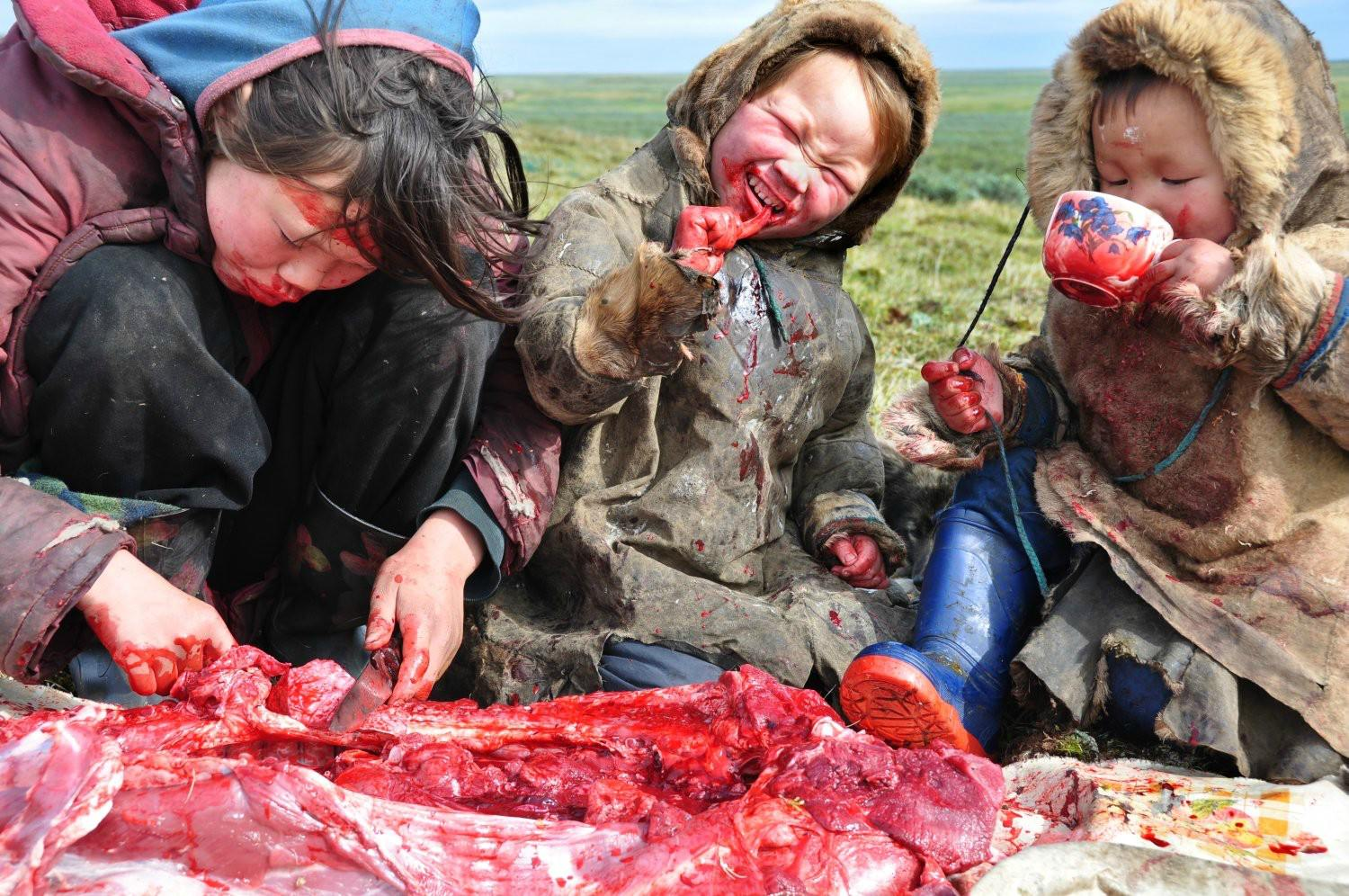 Image result for inuit eating raw meat