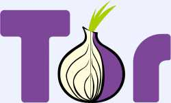 flash with tor browser hydraruzxpnew4af